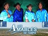 LOS AMABLES DE TAMPS    ya se acabo el   24