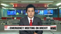Korean government holds emergency meeting on Brexit
