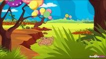 Little Peter Rabbit - Petit Lapin Pierre