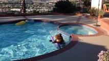 un ours s'incruste dans une piscine (video drole)