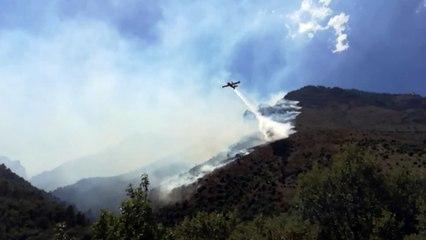 VIDEO. Corte : incendie dans la vallée du Tavignani