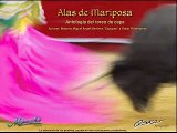 Alas de Mariposa 29... revolera invertida y doble