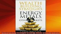 READ book  Wealth Building Strategies in Energy Metals and Other Markets Full Free