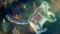 CUSCO - Ursa Minor -The constellation Polaris