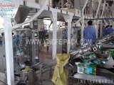 XFL 250 detergent washing powder packing machine