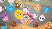 Baby Panda Learn About Sea Animal   Animal Puzzles & Real Video Of The Animals   Educational Games