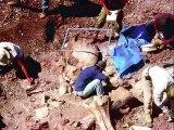 Des squelettes d'humains géants retrouvés par les archéologues