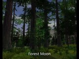 """SWG Soundtrack - 20 """"Forest Moon"""""""