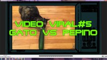 VIDEO VIRAL#5,videos virales, videos de caidas, videos chistosos,videos de risa, videos de humor,videos graciosos,videos mas vistos, funny videos,videos de bromas,videos insoliyos,fallen videos,viral videos,videos of jokes,Most seen,top 10