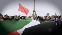 ترويج فلسطين تحت المجهر- نبض من باريس