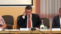 07. Gestion des marchés de vente au détail et de diverses occupations commerciales du domaine public – délégation de service public – rapport 2015