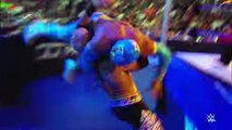 Spin cycle- 20 twisted attacks- WWE Fury