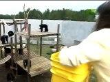 Au zoo, un singe risque la noyade. Puis quand cet homme fait ÇA? Tout le monde est sous le choc...