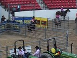 Bobbie, John Deere Supershow, Las Vegas, 15 221, 9th 3D, 2009