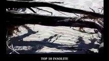 TOP 10 des 'VRAIS' Sirènes de mer retrouvées ! INCROYABLE Sirènes et PREUVES de leur Existence !