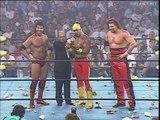 Hulk Hogan turns Heel and forms NWO, WCW Bash at the Beach 1996