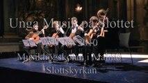 Musik på Slottet - Musikhögskolan i Malmö 25 Jan 2010