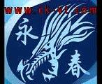 wing tsun 詠春拳 (27) wing tsun 詠春拳