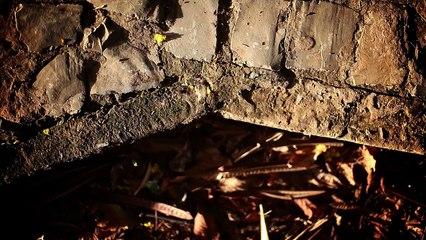 """video arte """"Vertente"""" (Samuel Reis, CineClube Cinema Comentado / Minas Gerais,2014)"""
