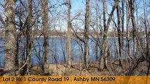 Land For Sale: Lot 2 Bk 1 County Road 19 Ashby, Minnesota 56309
