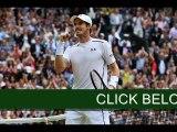 Tennis   Andy Murray v Milos Raonic: Wimbledon final 2016 Live