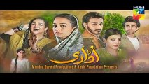 Udaari Episode 14 on Hum Tv in High Quality 10th 10 July 2016 watch now free full latest new hd drama stream online tv p