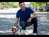 """Canguro canino, o cómo ganar """"un sueldo"""" alojando a un perro en tu casa"""