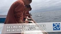 Des moines bouddhistes achètent et relâchent des centaines de homards