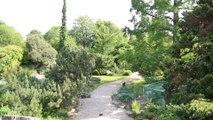 Les jardins secrets de Paris #3 : Le jardin alpin