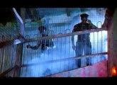 Anticappella ft. MC Fixx It - Move your body