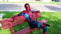 Spiderman and friends   Spider man, blue spider, Deadpool, Joker, black spider, Batman and Hulk Spiderman
