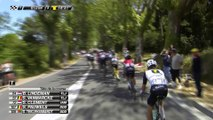 90 KM à parcourir / to go - Étape 12 / Stage 12 (Montpellier / Mont Ventoux) - Tour de France 2016