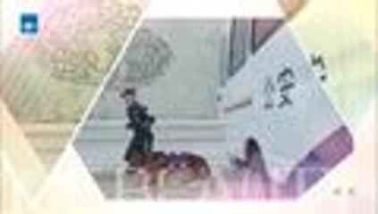 【HD】2016警花与警犬第14集 公安刑警 于和伟、侯梦莎、黄梦莹主演