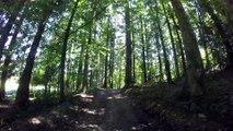 Forêt et Campagne Merlas Pays Voironnais
