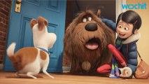 Weekend: Secret Life of Pets vs. Ghostbusters
