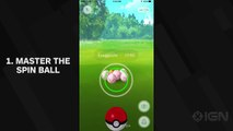 017_7-Tips-For-Throwing-the-Perfect-Pokeball-In-Pokemon-Go_ポケモンGO