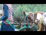 Ghazal Likama Tariq Shah Album Khaista Guloona
