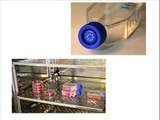 Condiciones generales de los cultivos de células animales. Vídeo 1