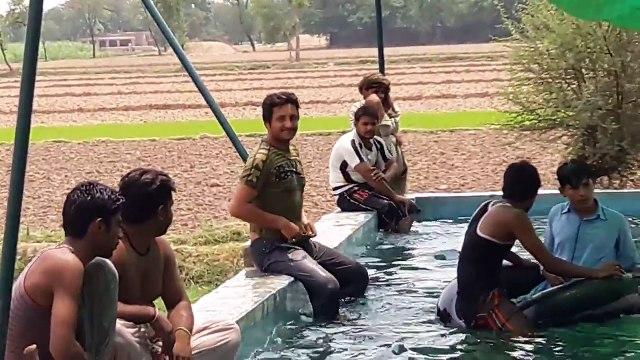 Sargodha Chak 91 Sb Zeeshan Bhatti Swimming pool video 19 June 2016