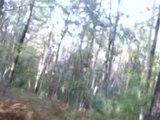 New, Real Bigfoot Footage