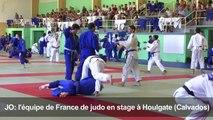 JO-2016/Judo: Teddy Riner en stage de préparation
