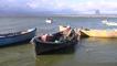 Manyas Gölü'nde Balık Bereketi