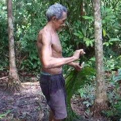Uma técnica impressionante para subir nas árvores