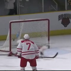 Incredible hockey save