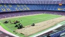 El FC Barcelona comença a instal·lar la gespa híbrida al Camp Nou
