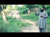 Wali Hen Do Jahan K | Muhammad Asif Qadri | Naat 2015 | Ramadan Kareem