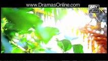 Dil Haari Episode 24 on ARY Zindagi 22nd August 2016