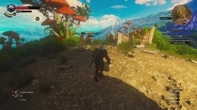 Witcher 3 ( Blood And Wine ) FIN