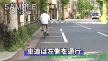 平成25年 改正道交法対応 成人向け自転車交通安全DVD ダイジェスト版