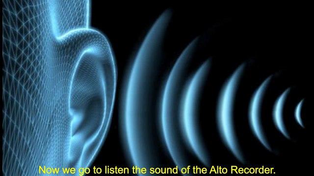 Instrument 10.Alto Recorder / Flauta de Pico Alto - Uriel Rostz